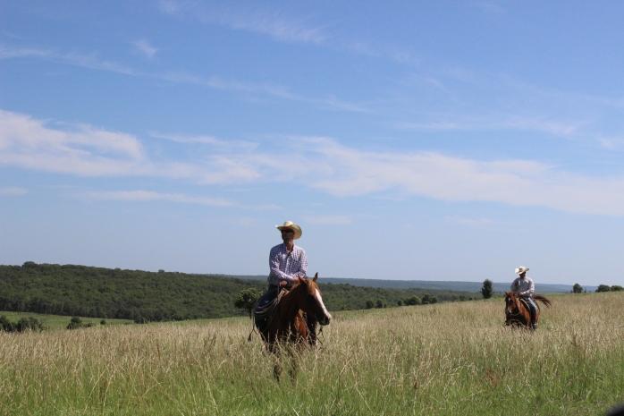 Cowboys on Z7 Bar Ranch